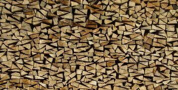 Hardwood vs Softwood: What's The Difference?